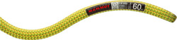 Lina Mammut 9.5 Infinity  Dry  (60m) pappel-lime green