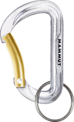 Mammut Mini Biner Element silver