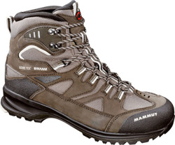 Buty Mammut Teton 3S GTX Men java-parchement